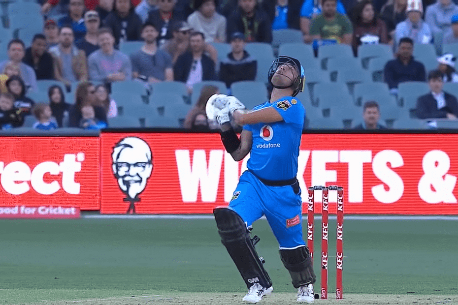 Who Will Win Adelaide Strikers vs Melbourne Renegades 33rd T20 Match Prediction